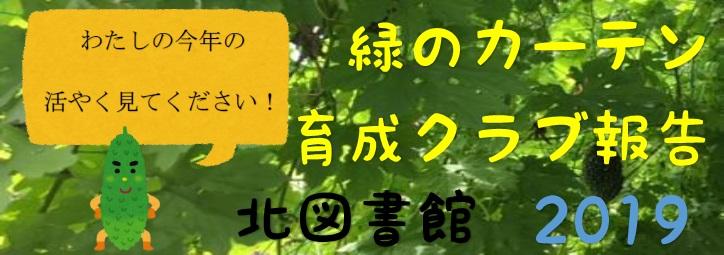 緑のカーテン育成クラブ報告 北図書館 2019